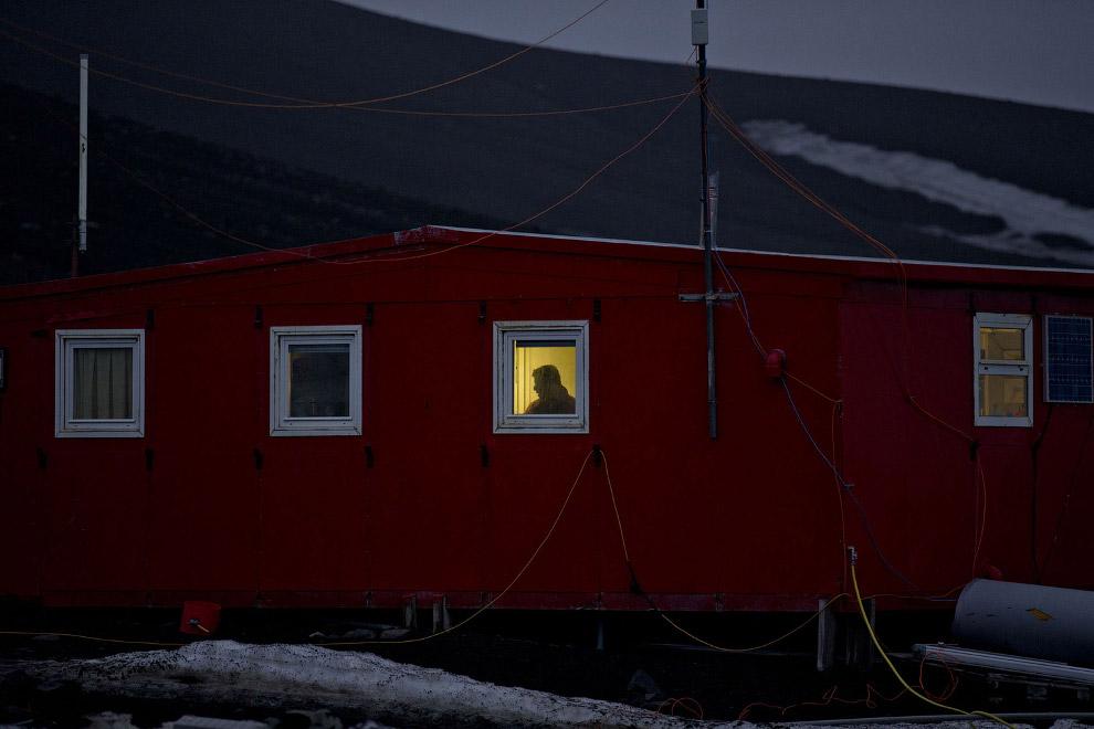Ученые в окне, Антарктида