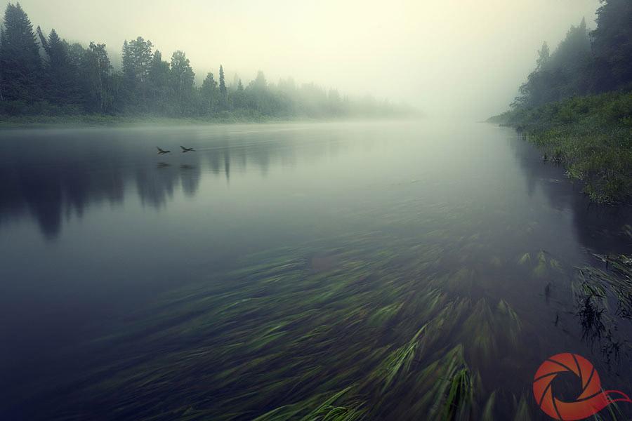 На реке сказок