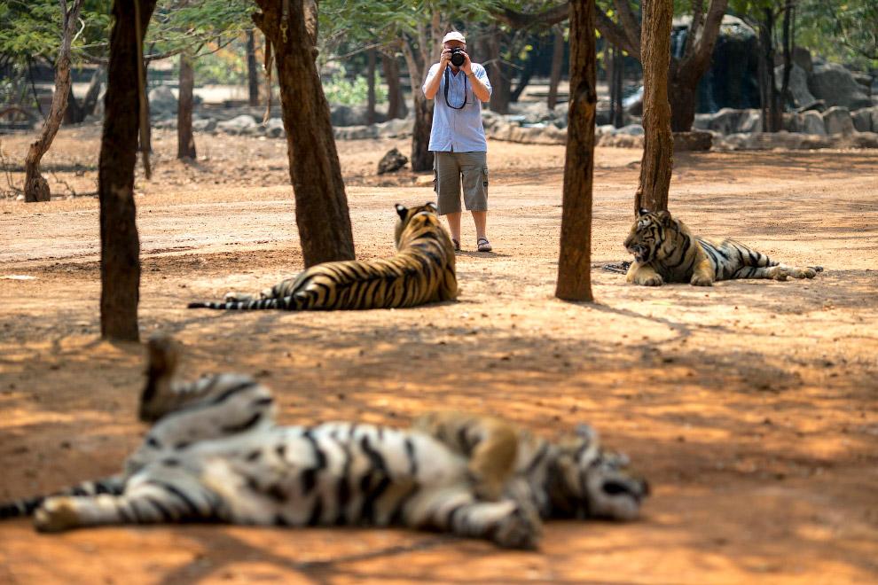 Туристы перед входом в Храм Тигров подписывают бумагу, что не будут иметь претензий, если их покусают тигры