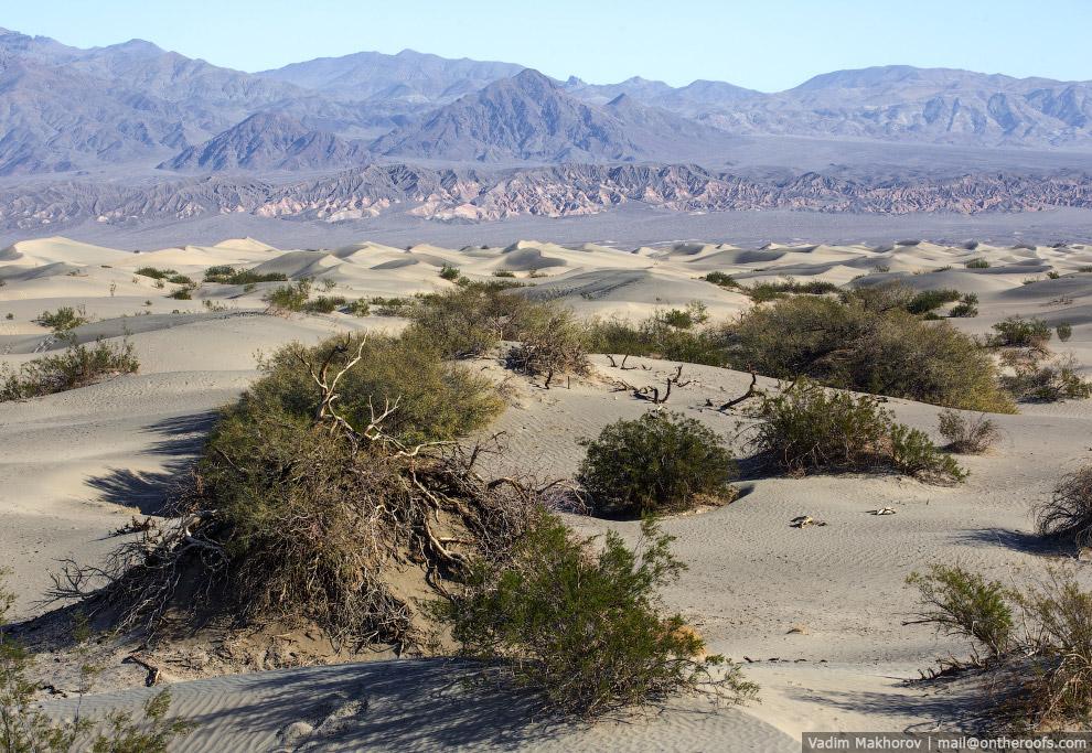 Dunas de areia.