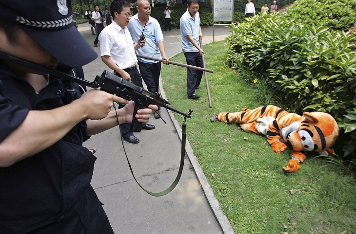 Побег из зоопарка