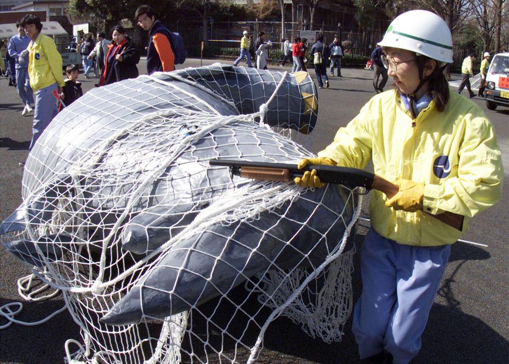 «Побег носорога» в зоопарке в Токио