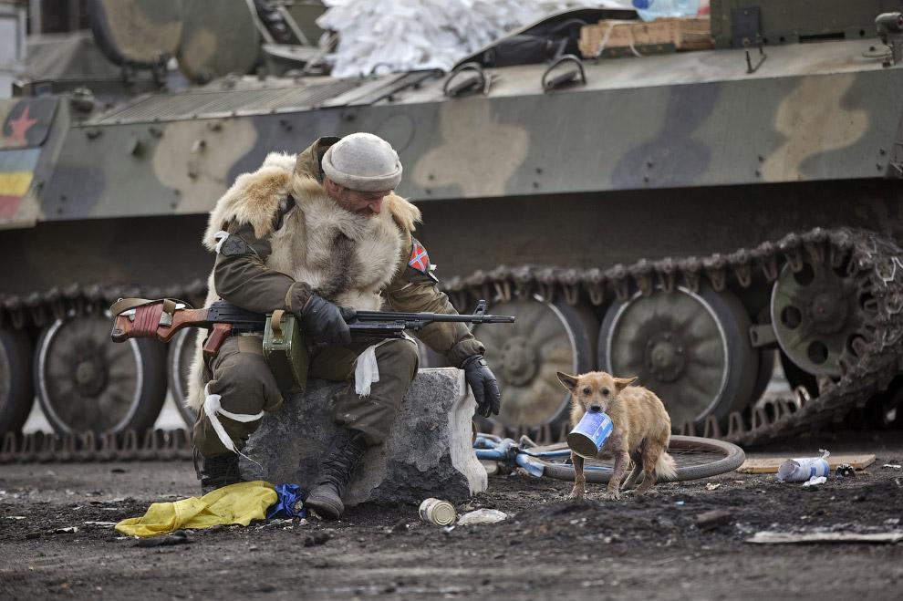 Пес-ополченец на Донбассе