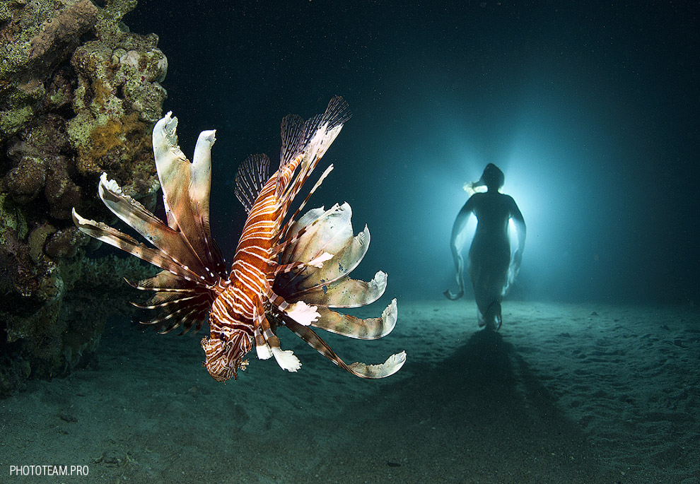 http://loveopium.ru/content/2015/03/Underwater/17.jpg