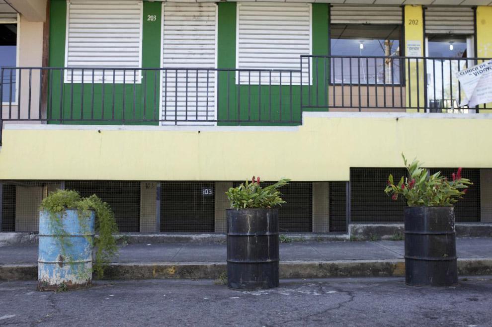 Баррель как клумба, Сан-Сальвадор