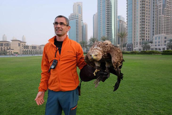 Орел Даршан и полет с небоскреба Бурдж-Халифа