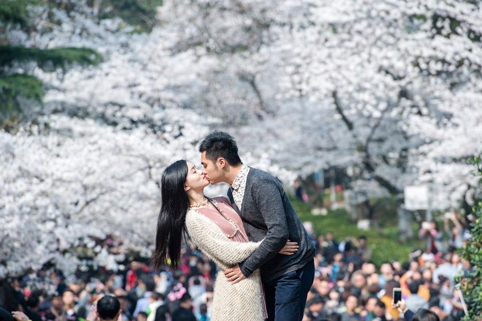 Свадьба весной символизирует рождение крепкой семьи