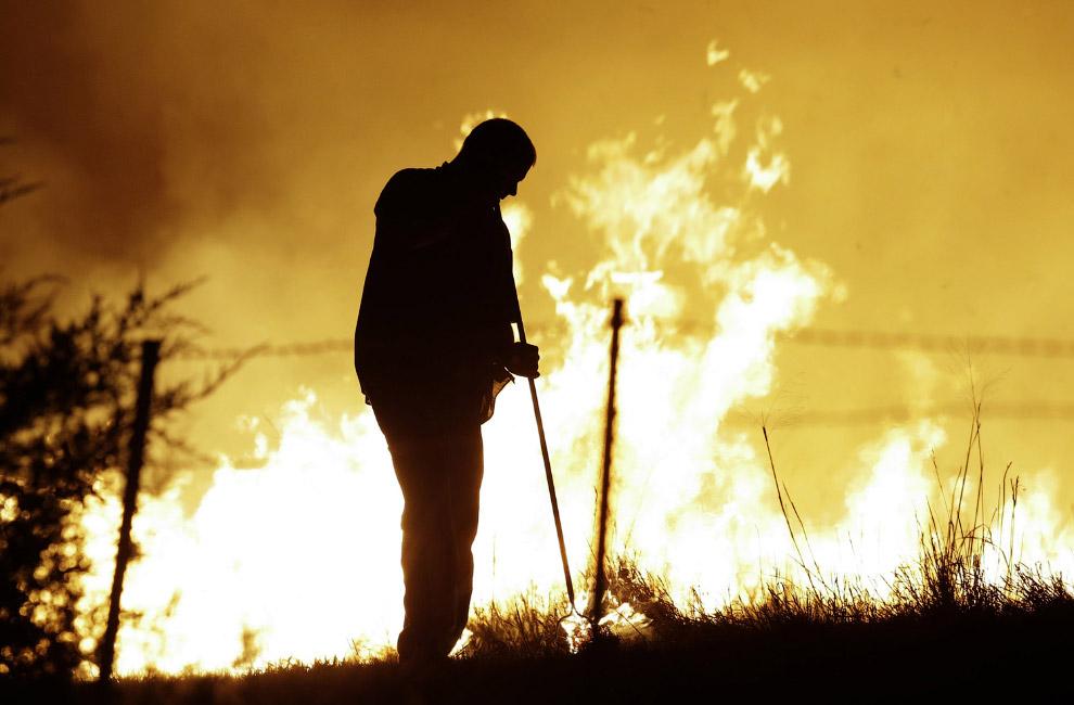Весной появляются первые природные пожары