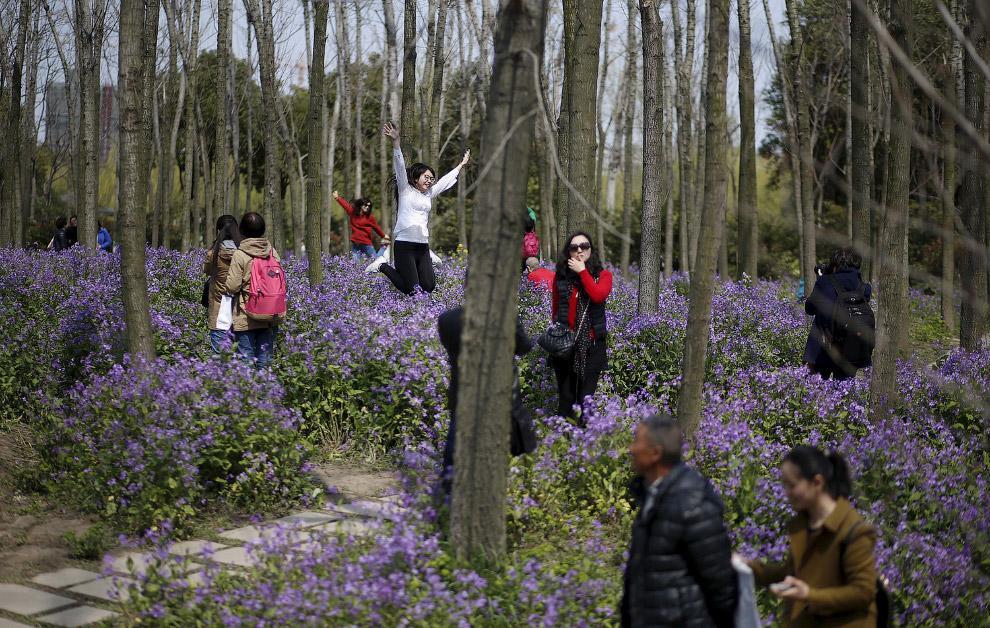 Весенний парк в Шанхае