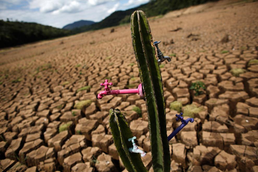 Художественная инсталляция во время засухи недалеко от Сан-Паулу, Бразилия