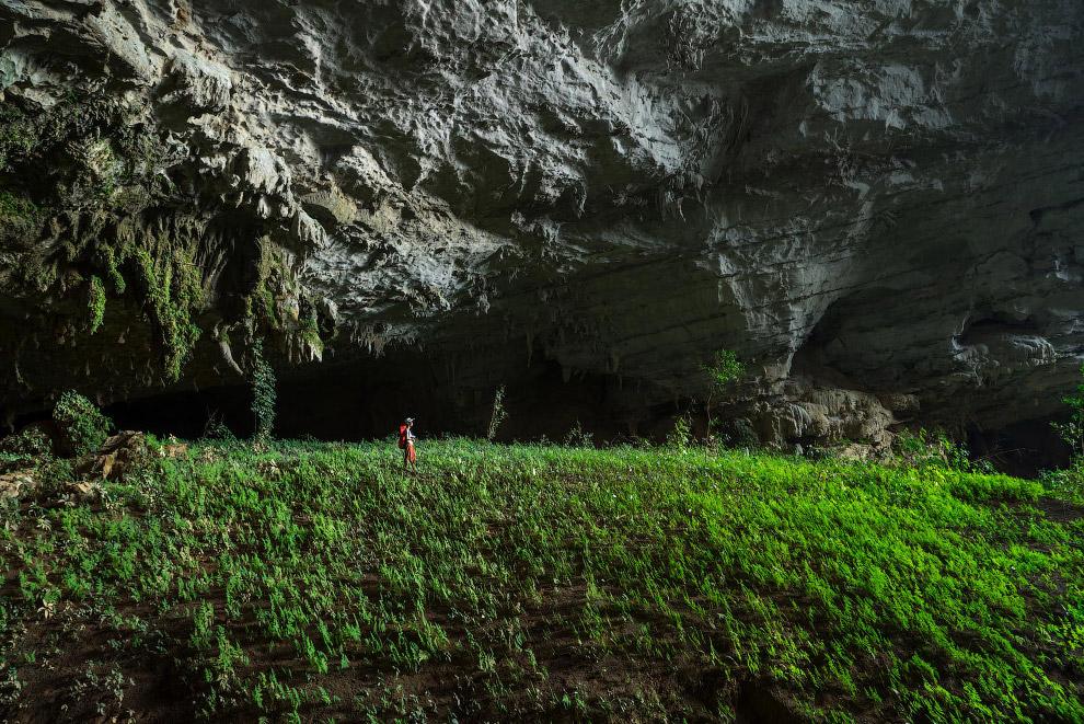 В пещере Tham Khoun есть настоящие подземные сады