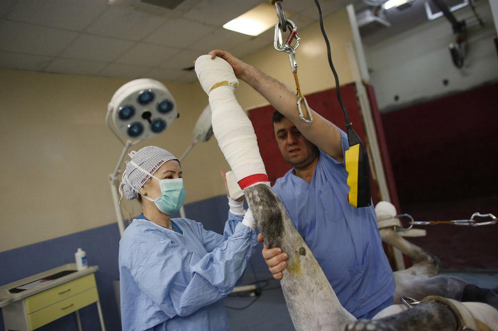 Хирурги накладывают послеоперационную медицинскую повязку