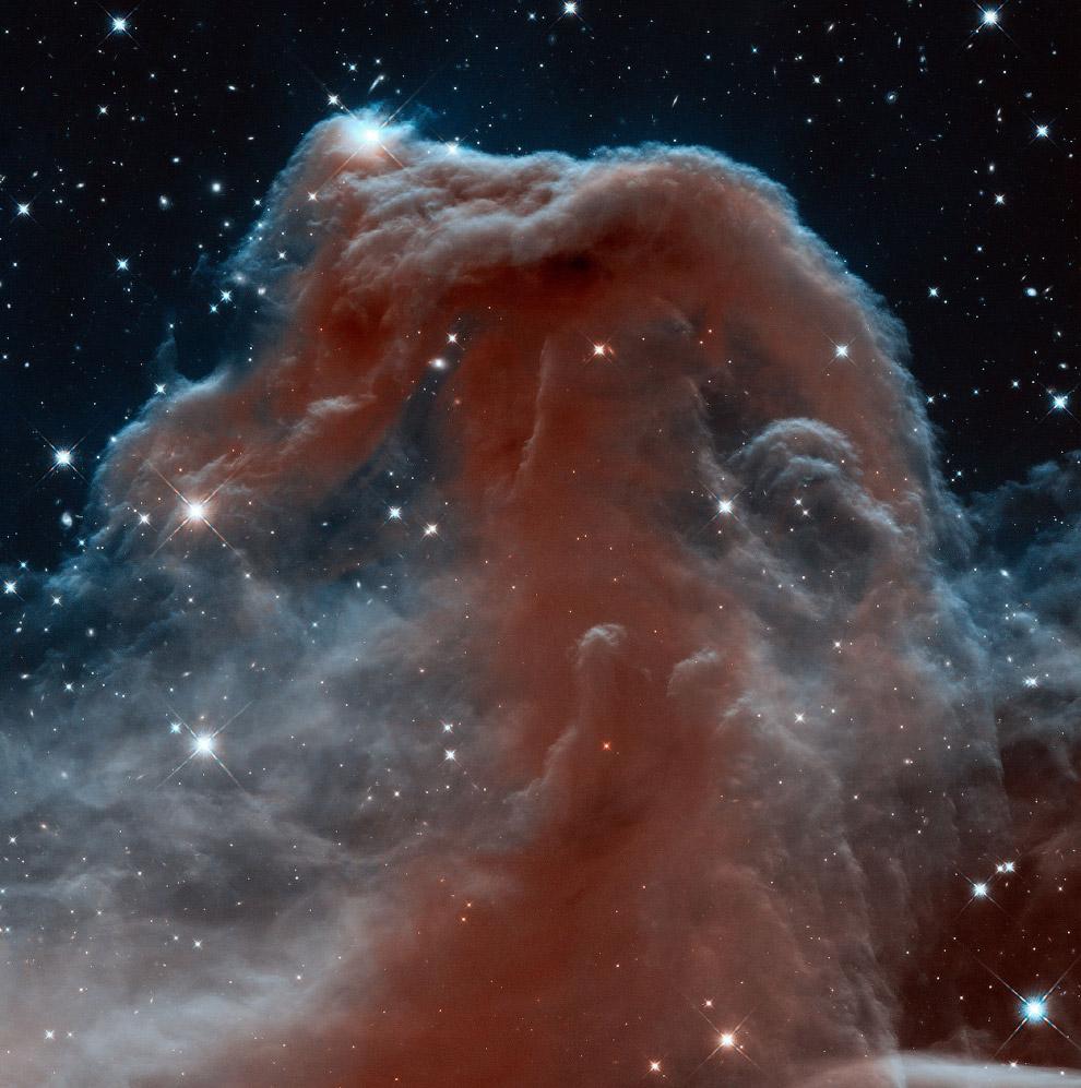 Тёмная туманность Конская голова в созвездии Ориона