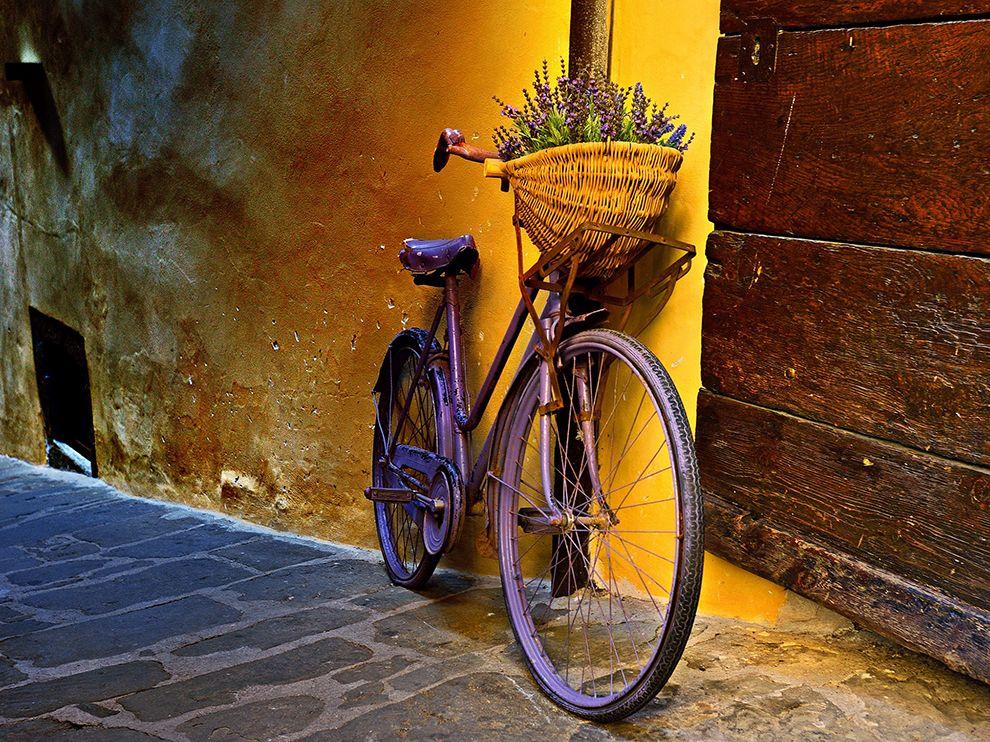 Цветочный велосипед в в Тоскане