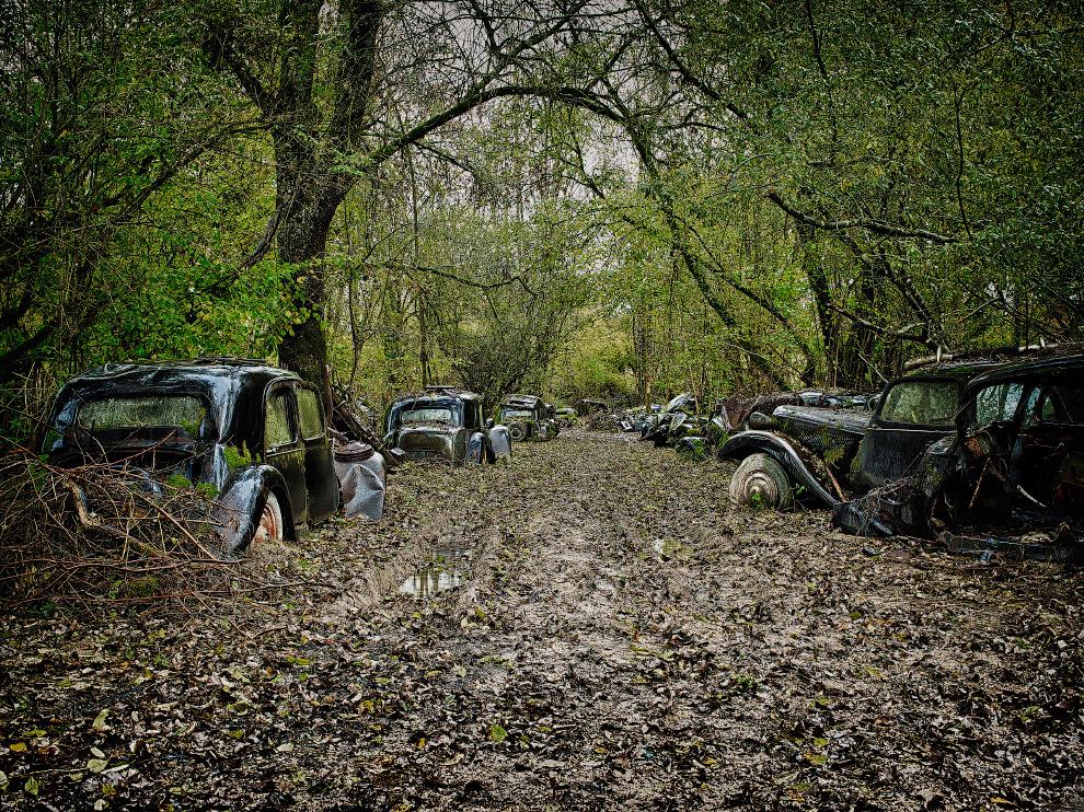 Во французских лесах можно найти целую «автостоянку» старых автомобилей