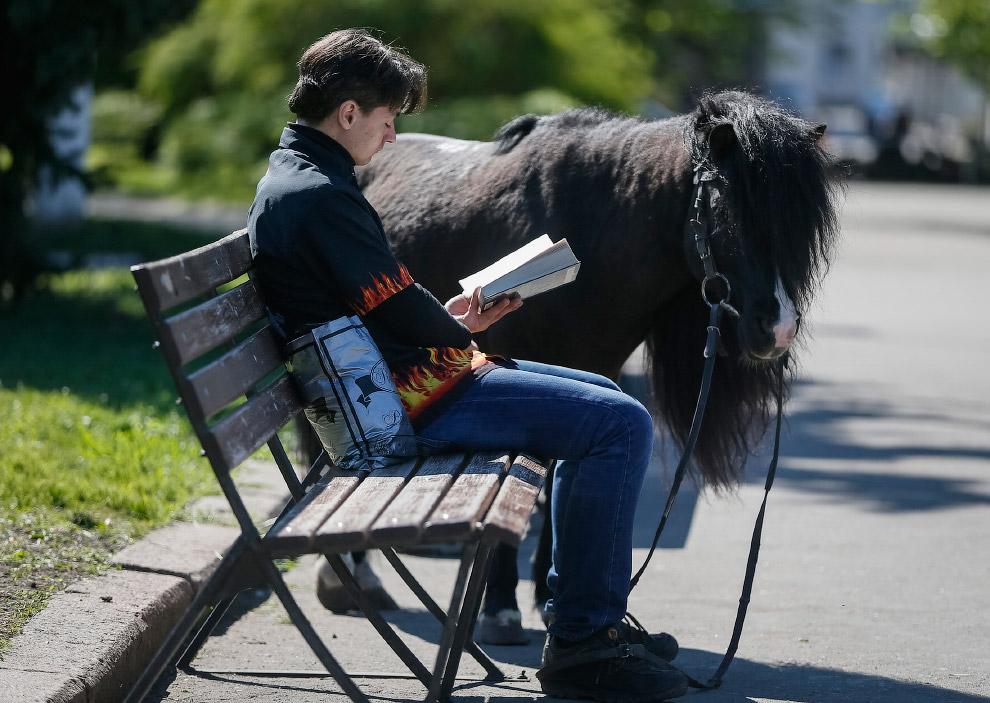 Хозяин со своим пони в центре Славянска, Украина