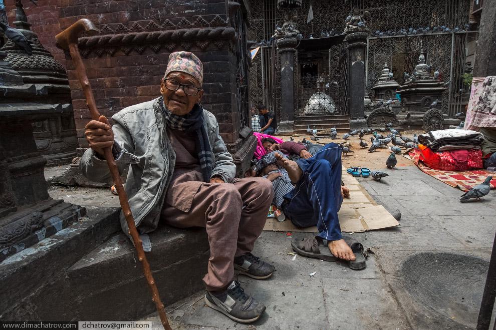 """""""Голубиный храм"""" в исторической части Катманду."""