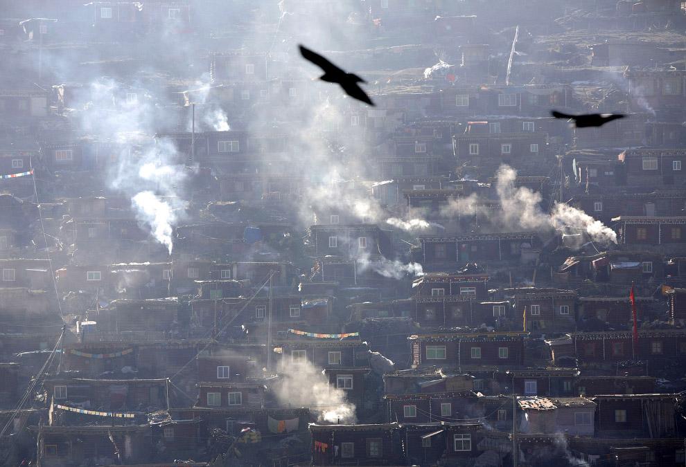 Дым из труб общежитий