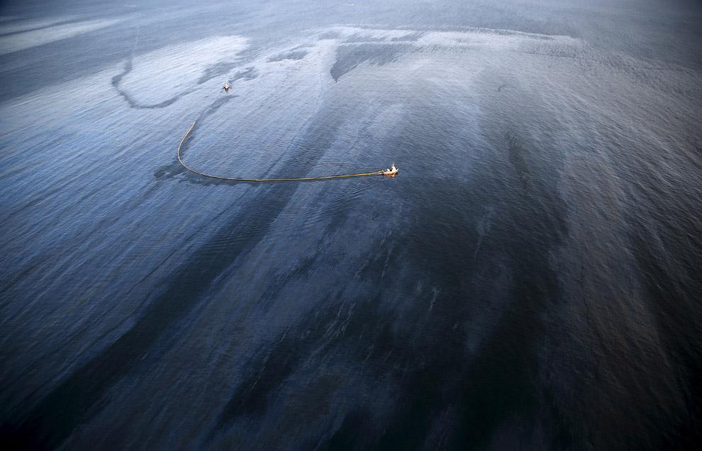 Нефтяное пятно. Калифорния