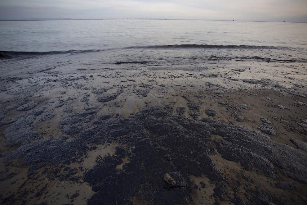 Нефть в Калифорнии