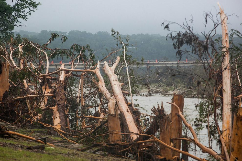 В штате Техас торнадо тоже прошелся, выкорчёвывал деревья
