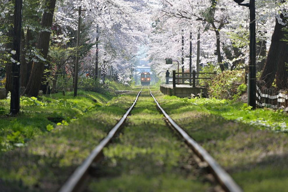Железная дорога в Аомори, Япония