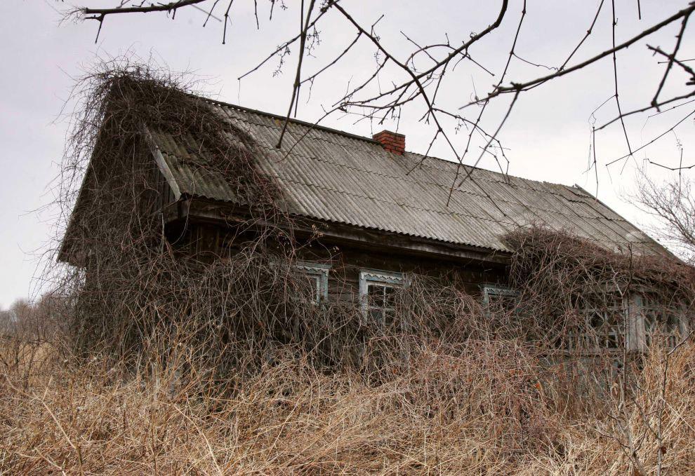 Деревня Дроньки, Беларусь