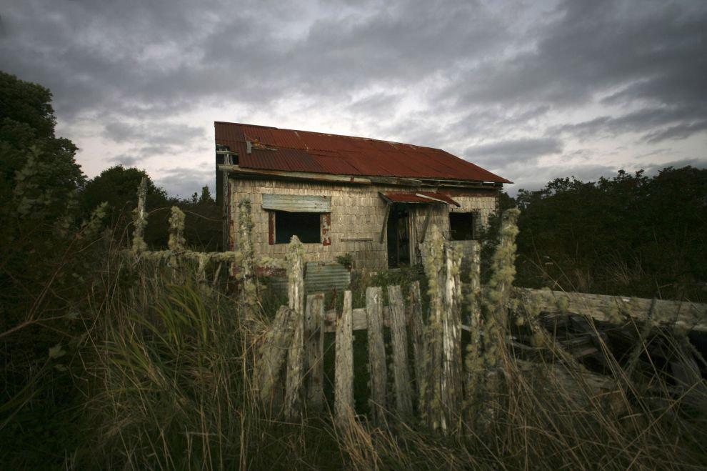 Заброшенный дом. Сейчас здесь живет природа