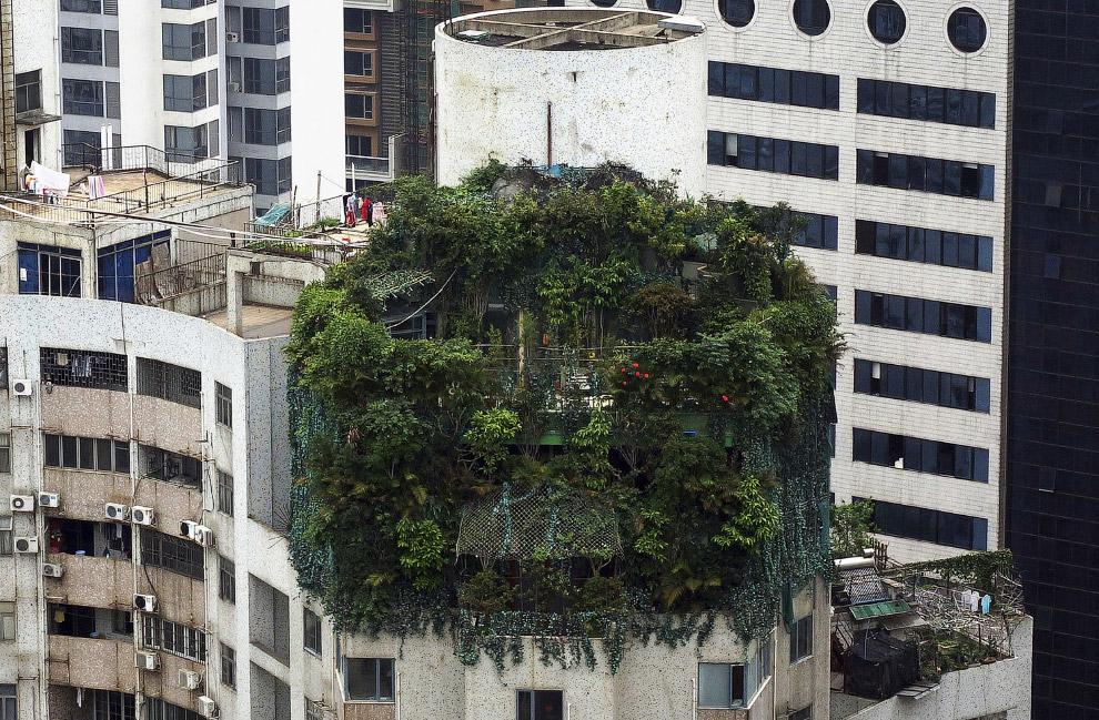 Незаконна забудова нагорі 19-поверхового житлового будинку в Гуанчжоу
