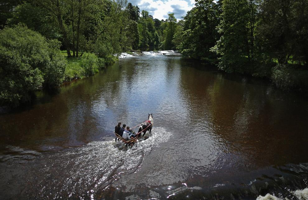 Прогулка на лошади по реке