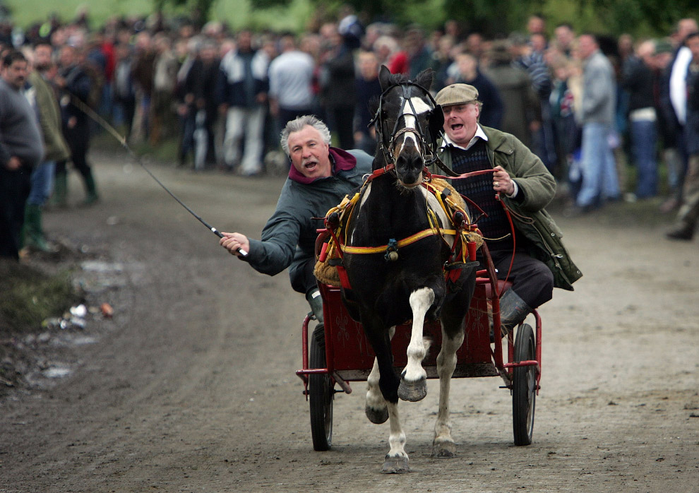 А рамках ярмарки лошадей проходят соревнования «безумная миля»