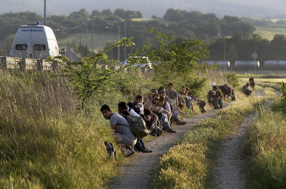 Каждый день сотни афганских, сирийских и африканских мигрантов пересекают границу из Греции в Македонию, чтобы держать свой путь в богатые северные страны Европы