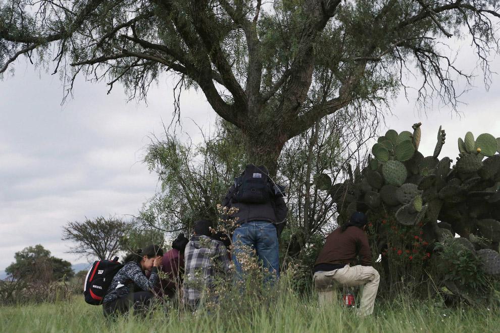 Эти нелегальные мигранты держат путь в США