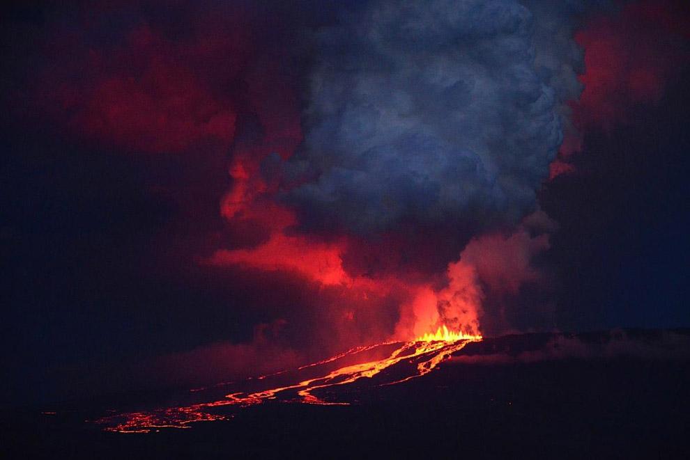 Извержение вулкана Вольф на острове Исабела, Галапагосские острова