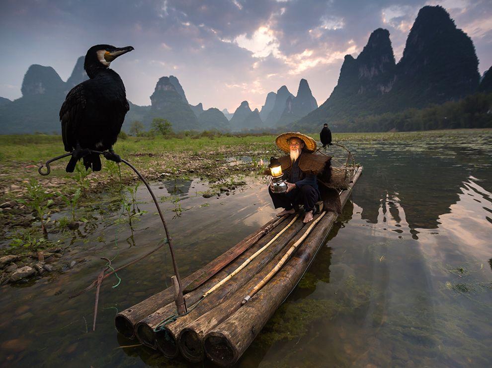 Рыбалка с бакланом в Китае