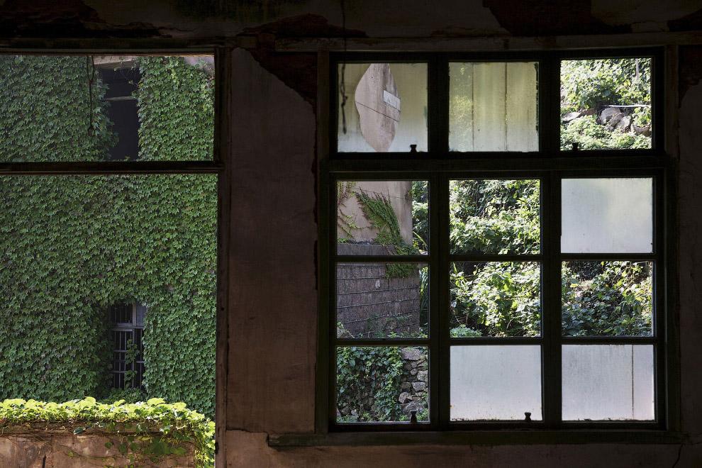 Вид из окна пустого дома