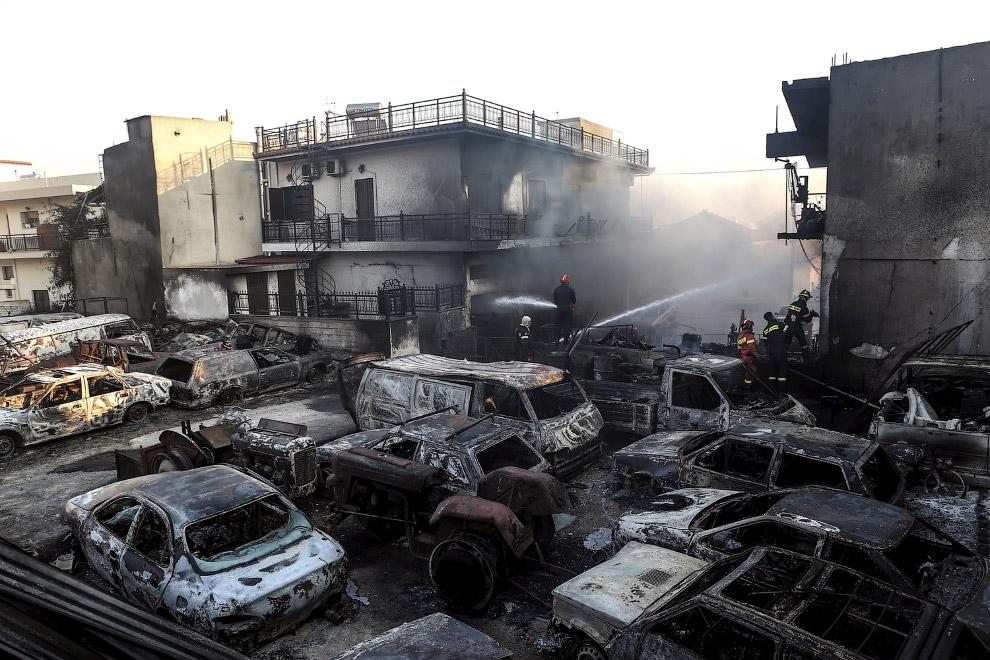Последствие лесных пожаров в городе Неаполис