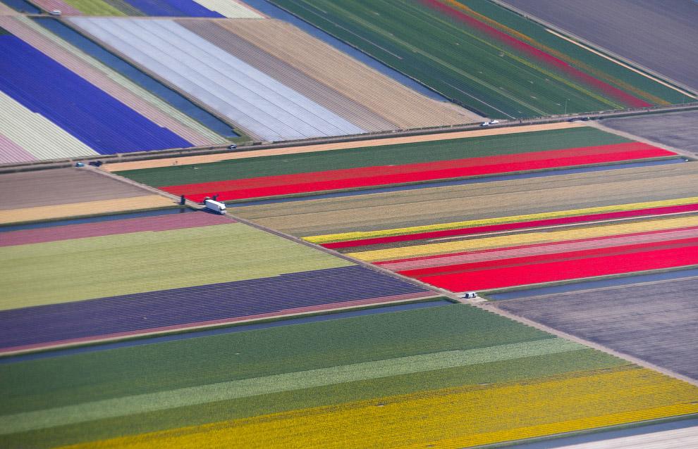 Сад Европы в Лиссе, Нидерланды