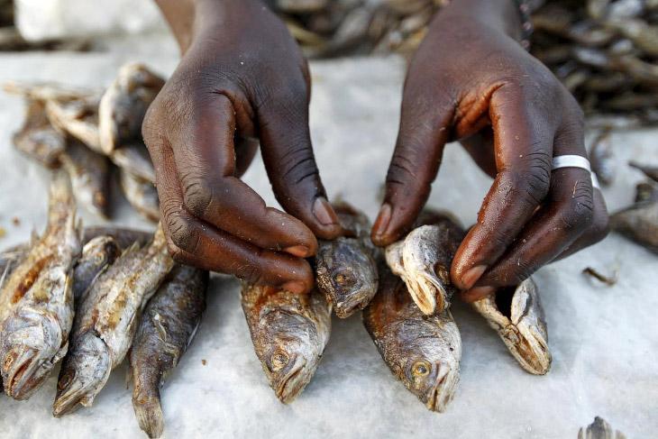 Продавец рыбы в деревне Когело, где родился отец политика