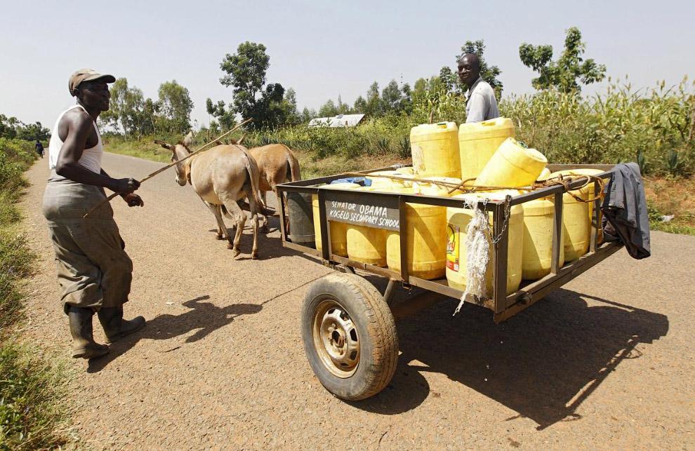 Водовоз, возит воду из ручья в деревню Когело