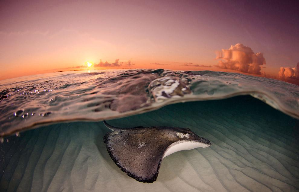Рассвет на Каймановых островах