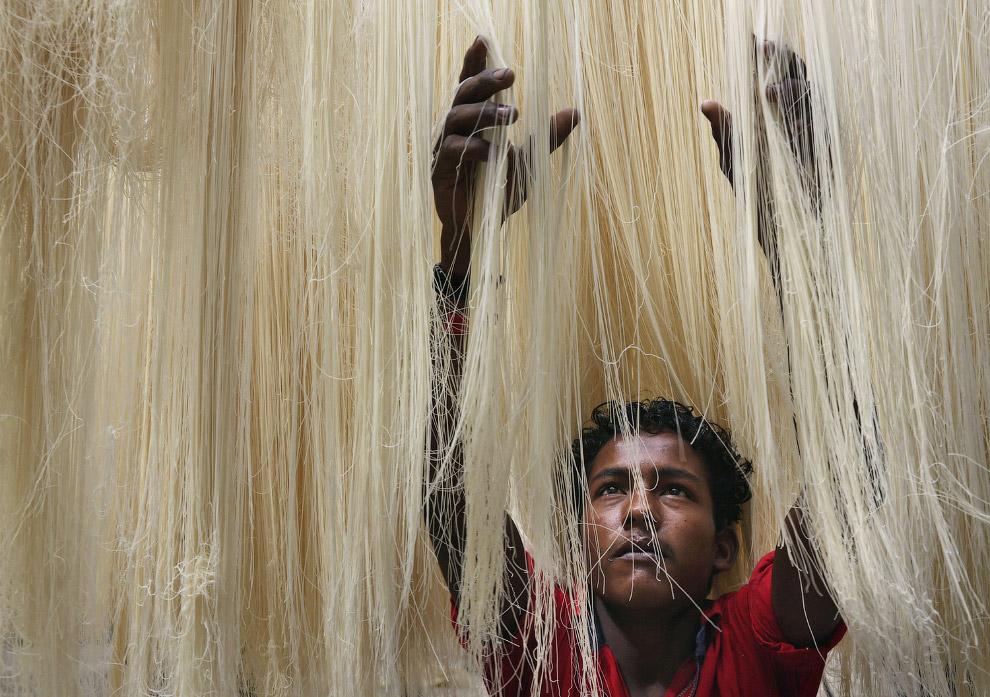 Пищевая фабрика по производству макарон в Хайдарабаде