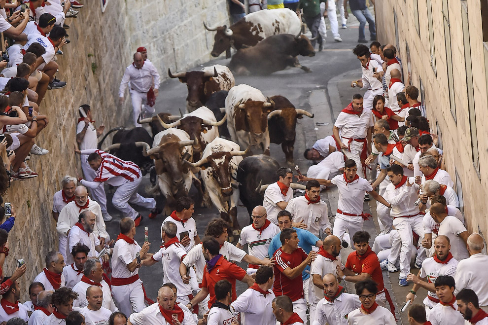 Бега быков: Сан Фермин 2015