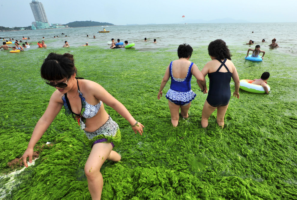 Побережье города Циндао на востоке провинции Шаньдун, на берегу Жёлтого моря