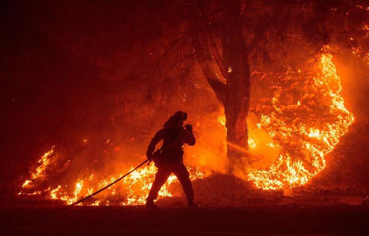 Бесчувственный огонь