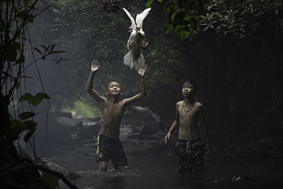 Два мальчика пытаются поймать утку возле водопада