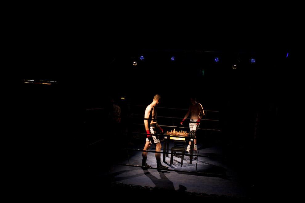 После каждого раунда боксеры играют в шахматы