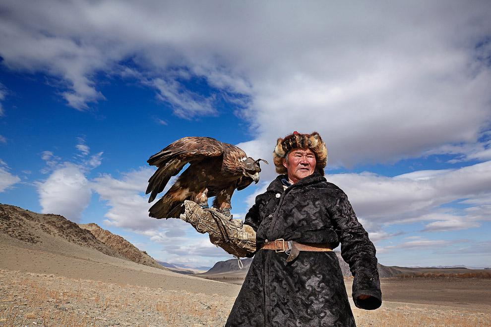 Орлиная охота в Монголии