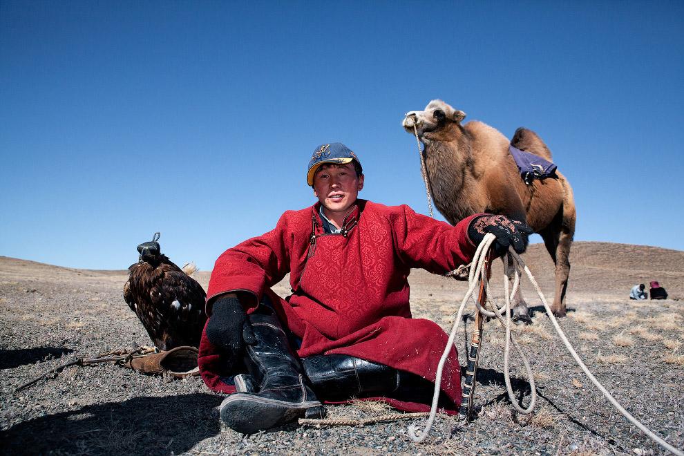 В путешествиях на дальние расстояния охотнику и его орлу помогает верблюд