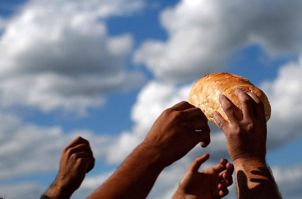 Раздача хлеба в лагере для мигрантов, Сербия